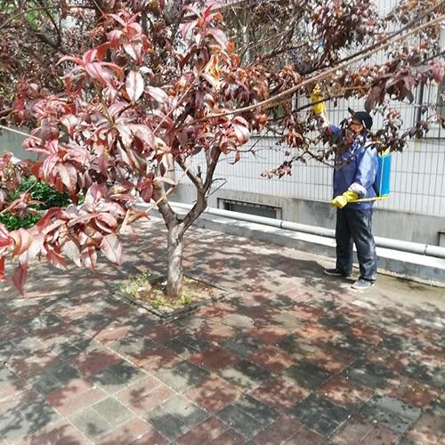 小区绿化保洁